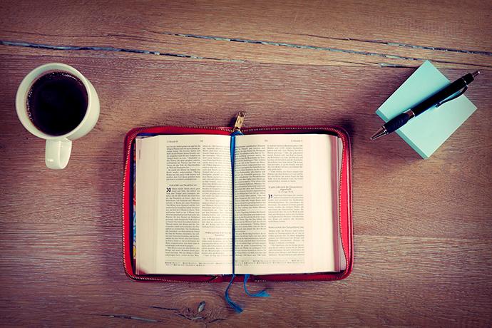Lea la Biblia en 1 año – 74° día