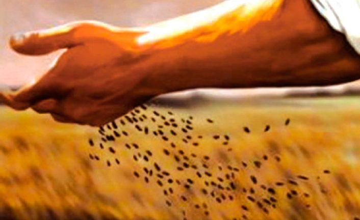 El ADN del Espíritu de Dios