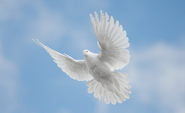 Cómo recibir el Espíritu Santo
