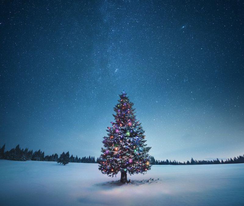 Navidad: el verdadero significado